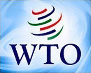 Россия вступит в ВТО, а погорельцам так и не помогут?