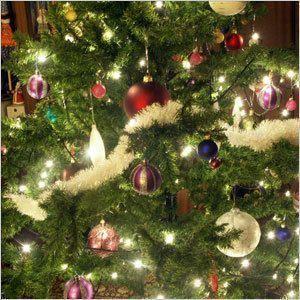 Главную городскую елку зажгут 9 декабря